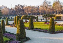 Мадрид. Парк Ретиро в январе