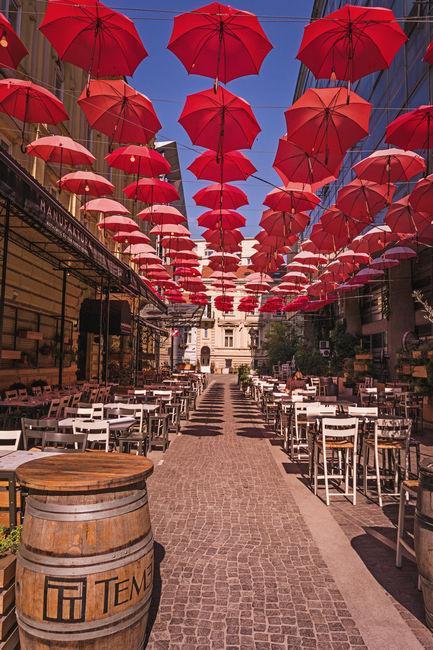 Отдых в Белграде