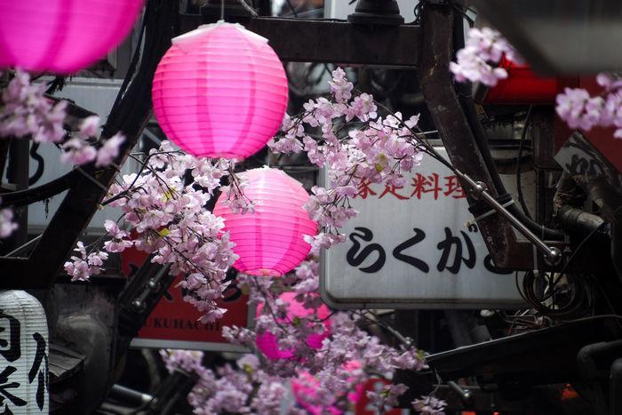 Сердце Токио глазами польского фотографа Лукаша Палки