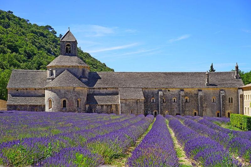 abbaye de senanque, прованс