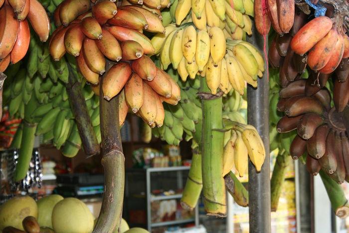 Яблочные бананы (Latundan banana)