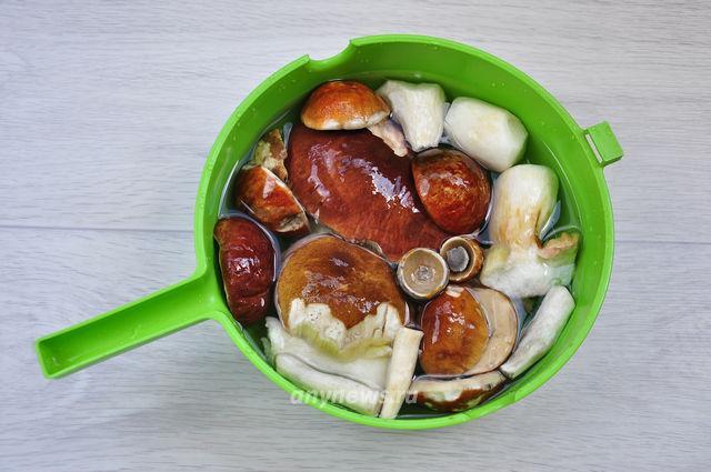 Грибной суп из свежих белых грибов и подберезовиков