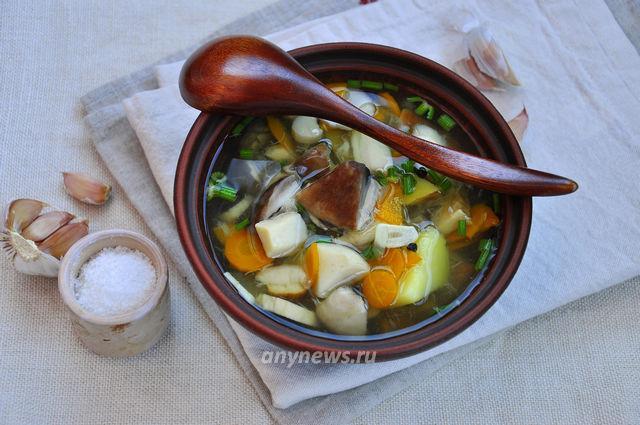 Грибной суп из белых грибов и подберезовиков